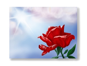 red-rose-card-purchase-link